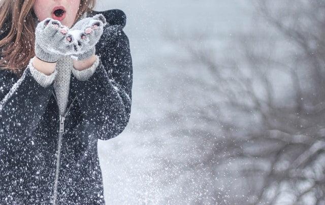7 merken op een rij: deze vegan winterjassen houden je echt lekker warm