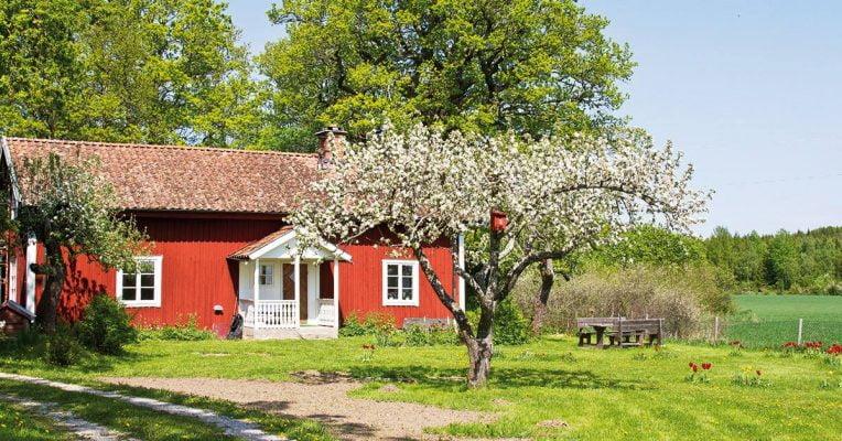 Het Zweedse ecodorp Bolderburen vlakbij Almere is bijna af