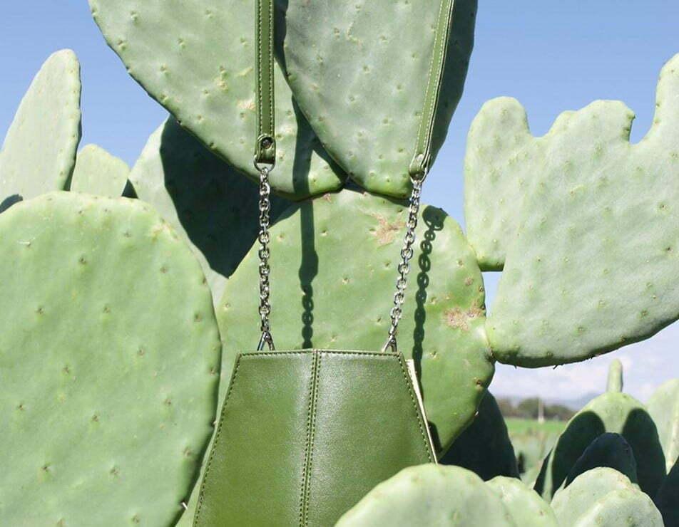 leer van een cactus