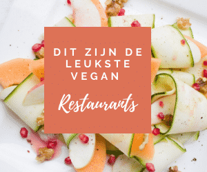 'vegan restaurants