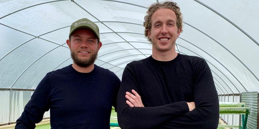 Eiwitproduct van eendenkroos: deze Nederlandse jongens maken het