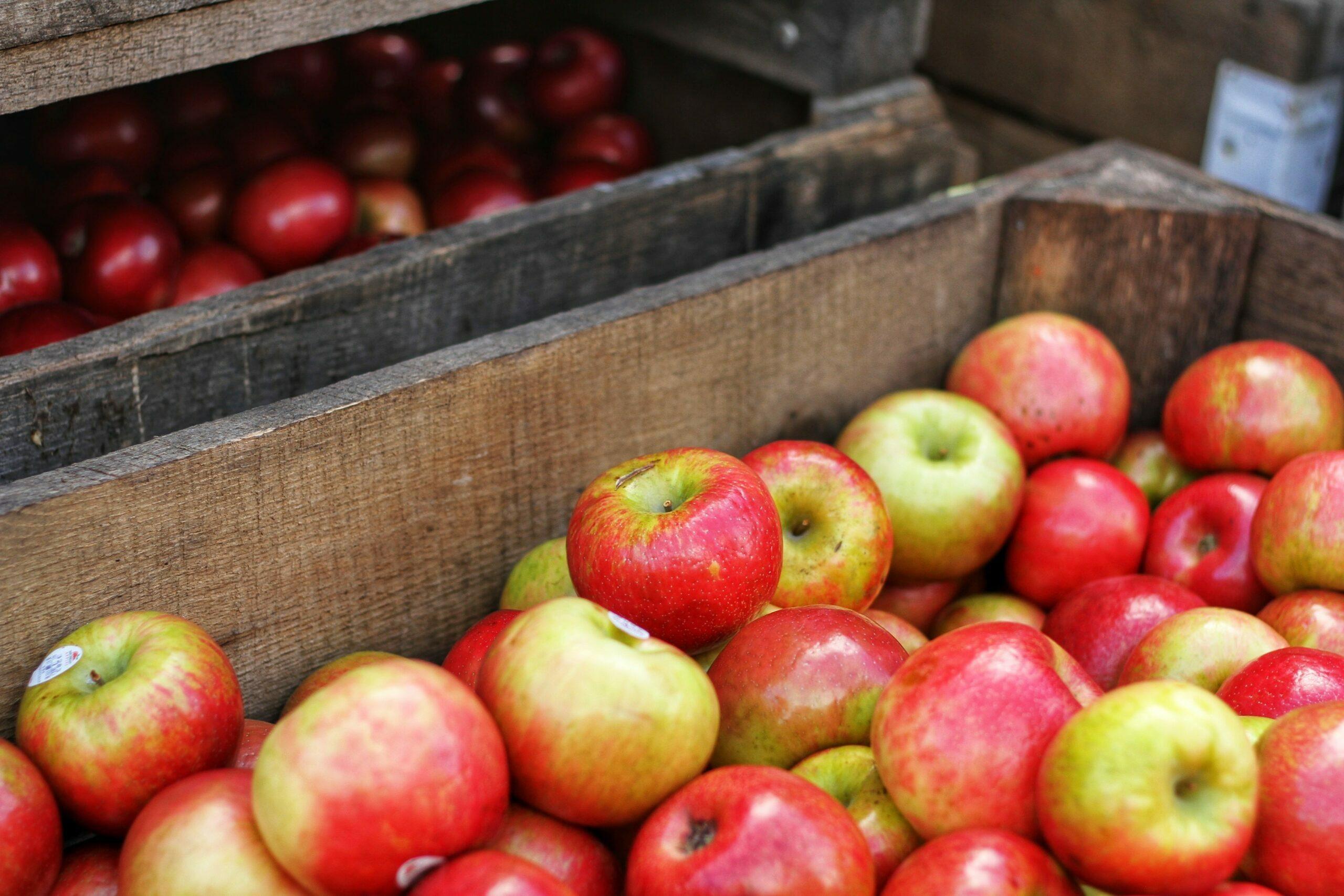 pluk je eigen appels