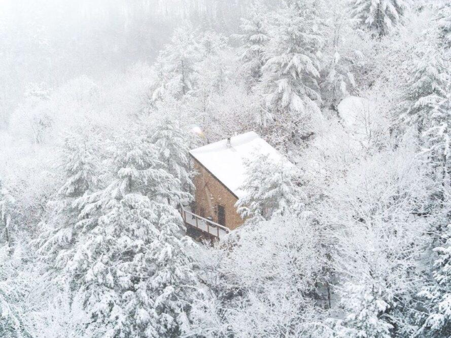 tiny house in de natuur