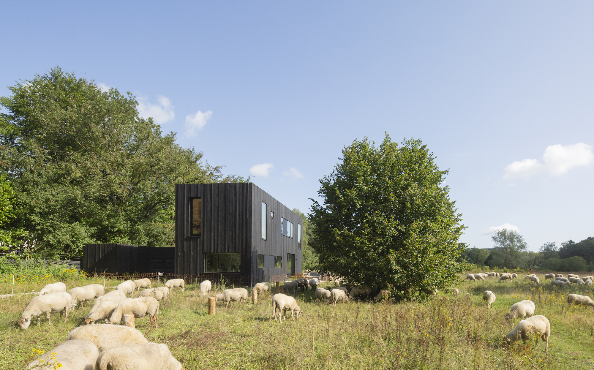 huis van hout joris verhoeven