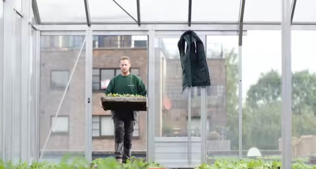 supermarkt met roof garden