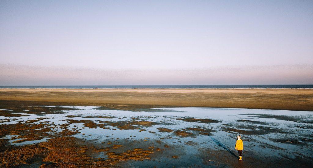 plastic in de Waddenzee