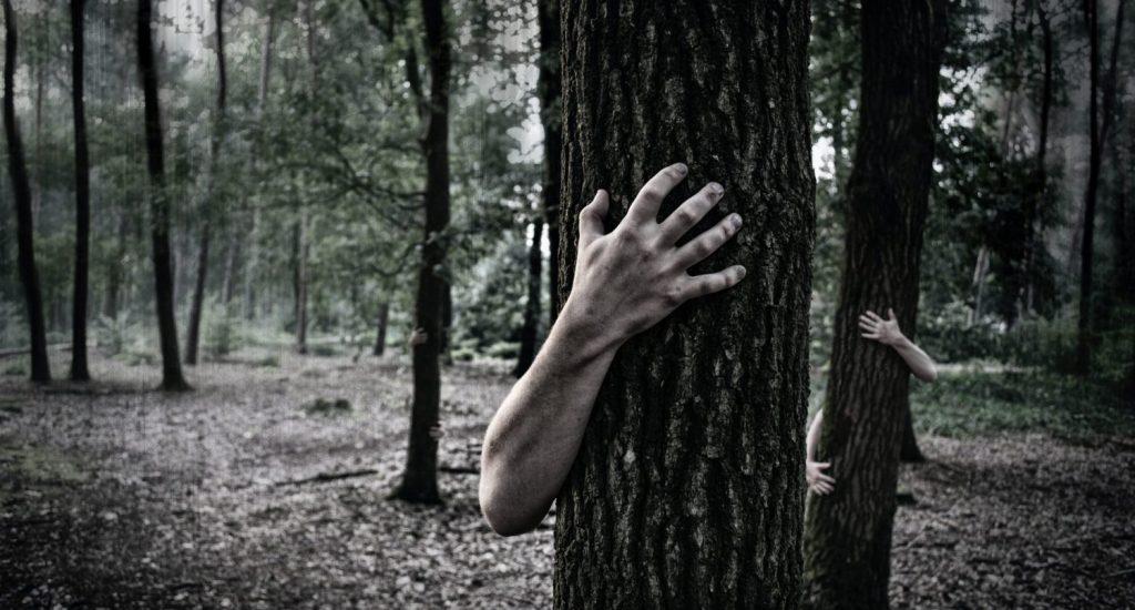bomen knuffelen